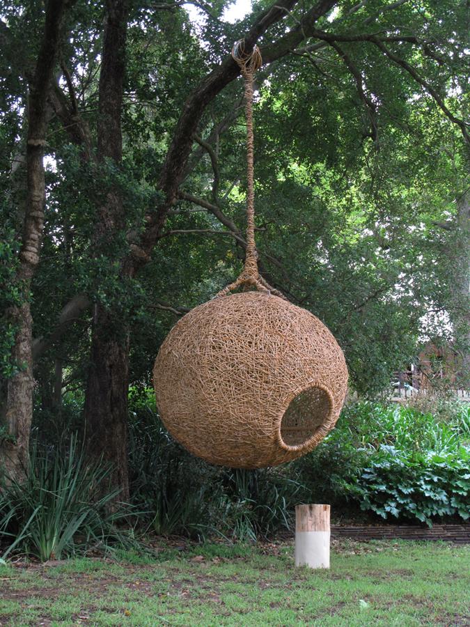 bernard nest web